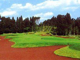 ★7/14(土)に(千葉県・大沢IC) 真名CCゲーリー・プレーヤーコースにて開催される【関東地区予選会】全日本ヒルズ(豪州)国際ジュニアゴルフ選手権の受付を開始しました。 イメージ4