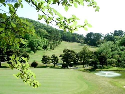 ⛳3/24(日)に(宝塚IC)宝塚クラシックゴルフ倶楽部にて開催される【関西地区予選会】第9回USAハワイホノルルパールジュニアオープン(PJO) 日本代表選抜の受付を開始しました。 イメージ7